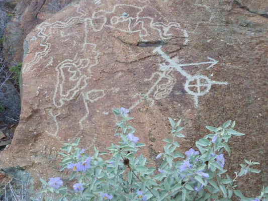 Night shade rockart