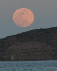 Moonrise over Danzante Island