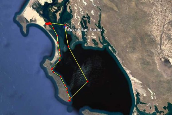 Magdalena Bay Wildlife route